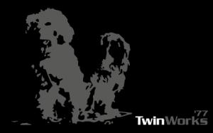 Twinworks logo